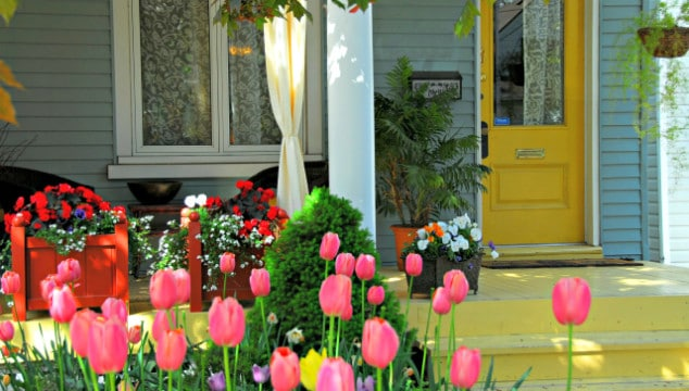 improve the value of your home on a budget