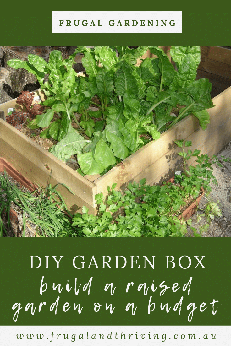 Save money with a DIY garden box. Here\'s how we made our wooden raised garden bed. Save money and grow your own food with this easy-access garden. #frugalgardening #raisedgarden