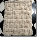 dishcloth11