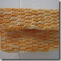 dishcloth24