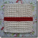 dishcloth3