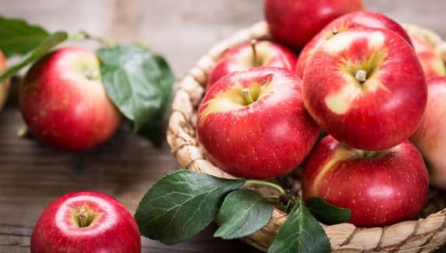 autumn fruit and vegetable guide