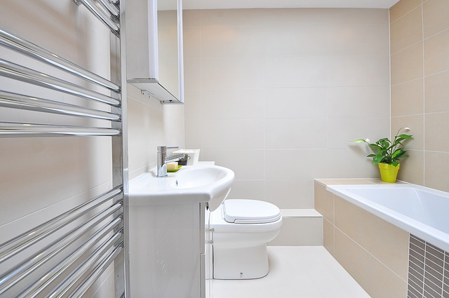 how to get rid of mould in the bathroom