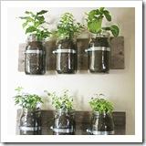 jar planter
