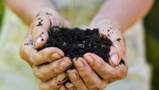 How to Make Super Fast Compost For Your Garden