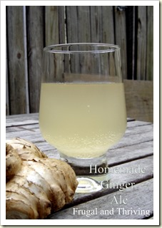 Homemade Ginger Ale Wild Fermented