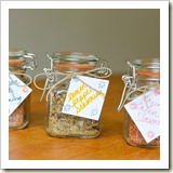 DIY Seasoning Mixes from Luci's Morsels | Frugal Handmade Gift Ideas | Frugal and Thriving
