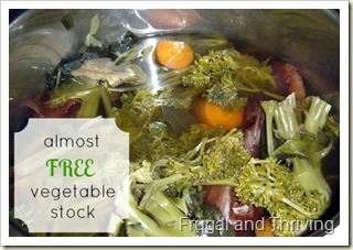 almost free vegetable stock