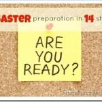 preparing an emergency plan {disaster preparation day 3}