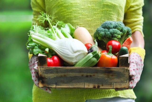 Reduce Food Waste by using up your Vegetables