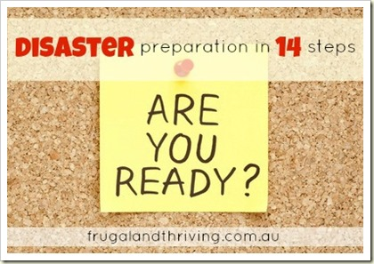 Disaster Preparation in 14 Steps