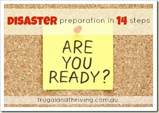 Disaster Preparation in 14 Steps | Photos and Mementos | Frugal and Thriving