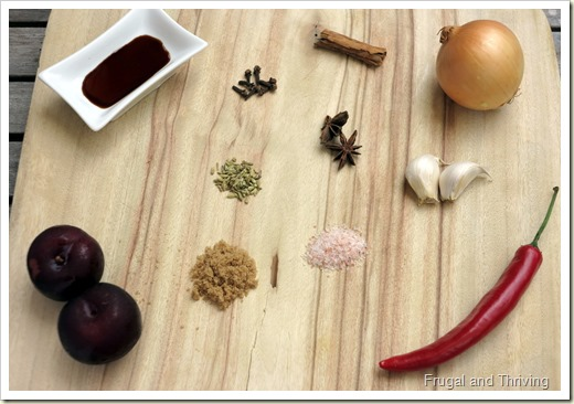 Homemade Asian style Plum Sauce | Frugal and Thriving