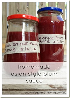 preserving the seasons: Asian style plum sauce