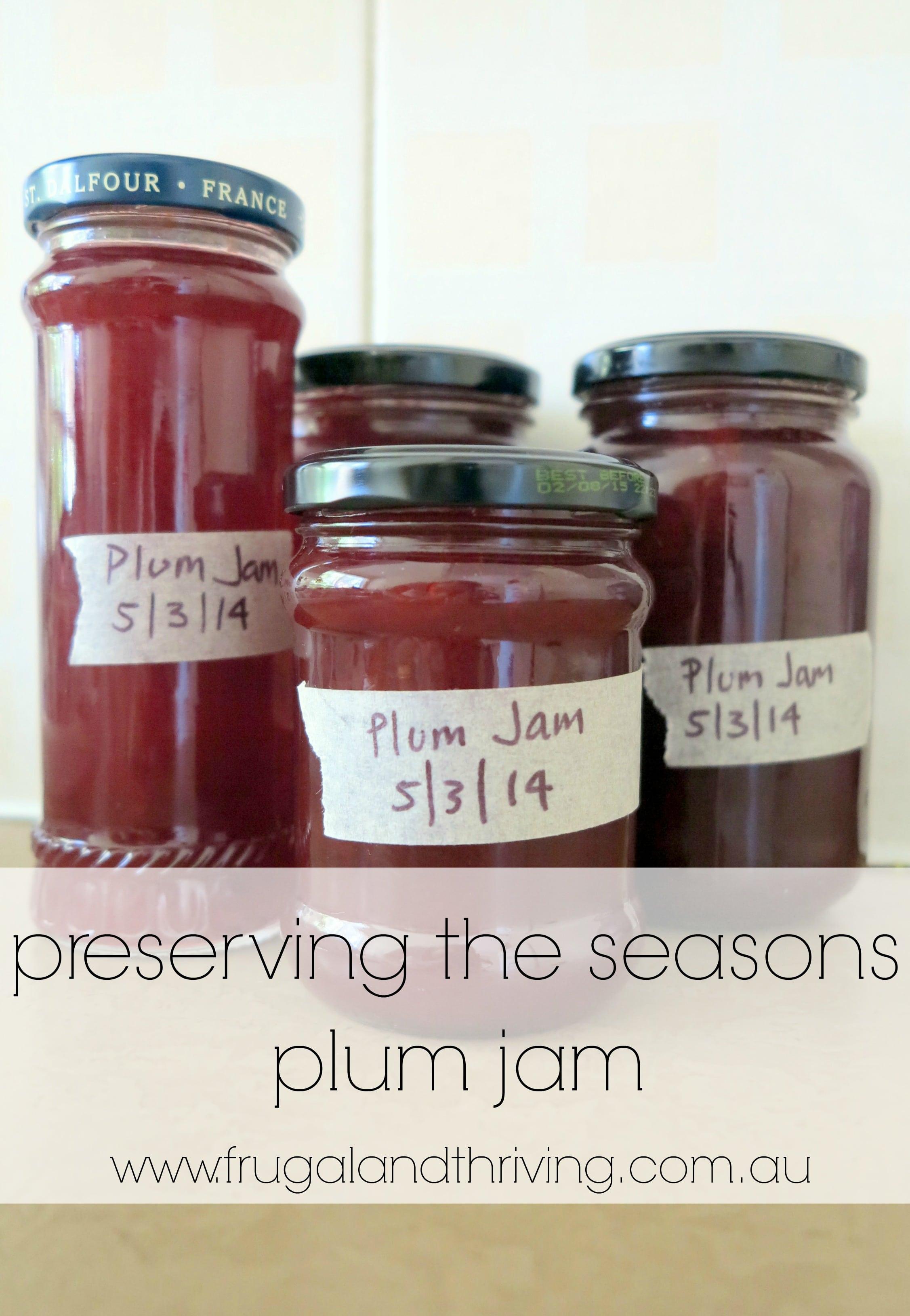 Basic Plum Jam Recipe
