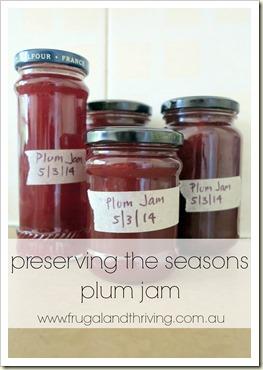 preserving the seasons: simple plum jam