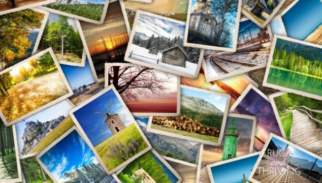 how to organise your digital photos in 6 easy steps