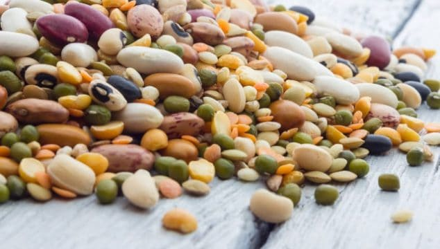 Cooking dried beans in a thermal cooker