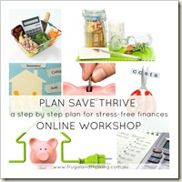 PLAN SAVE THRIVE online workshop