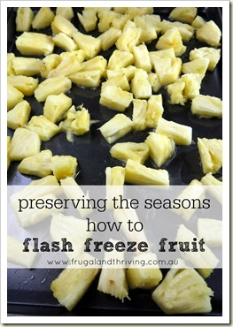 preserving the seasons – how to flash freeze fruit