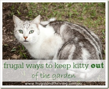 frugal ways to keep kitty out of the garden