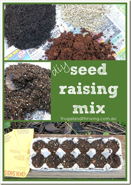 DIY Seed Raising Mix – Save Money and Grow Healthy Plants