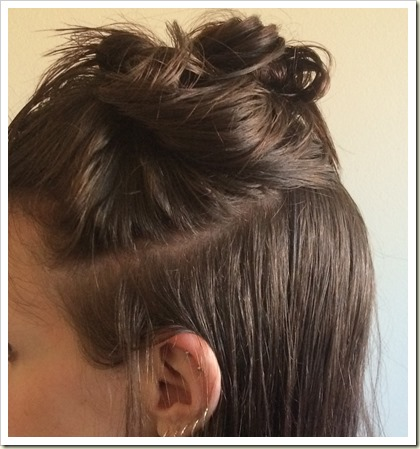 hair sections