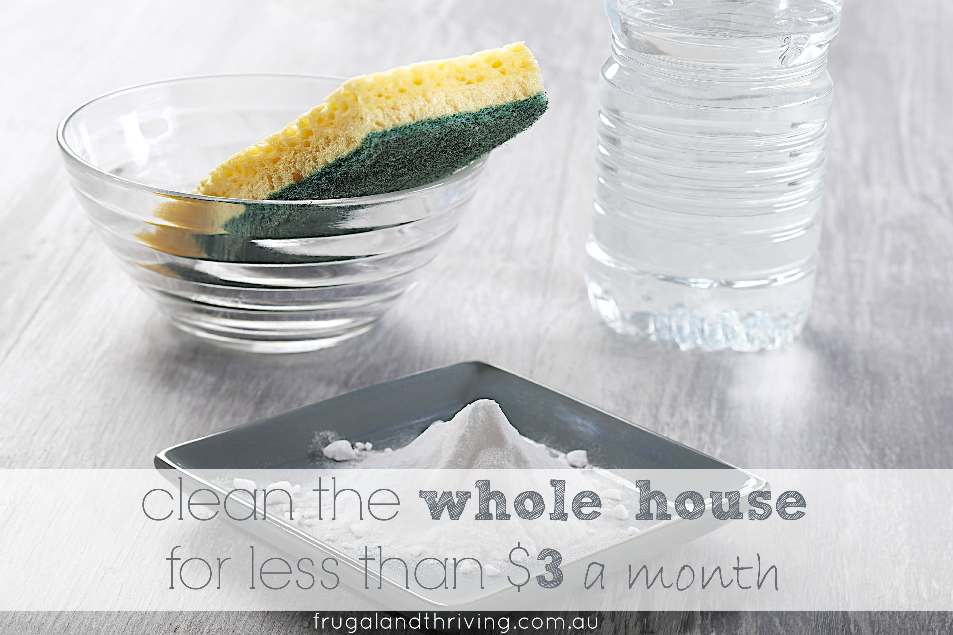 clean the whole house for less than $3 a month