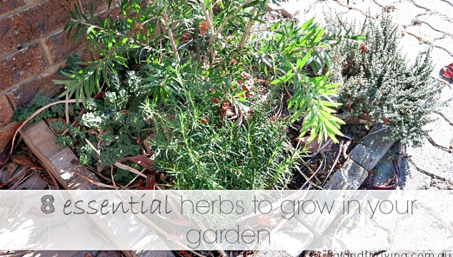 8 essential herbs to grow in your garden