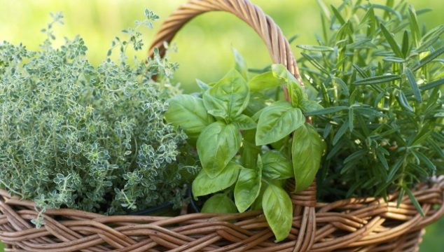 Essential herbs to grow in the garden