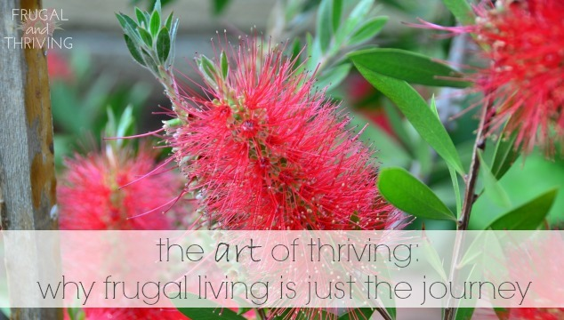 the art of thriving: why frugal living is just the journey
