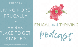 Podcast episode 1: getting started in frugal living