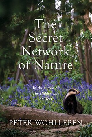 The Secret Network Of Life
