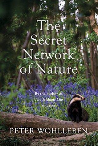 The Secret Network Of Life