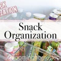 Back To School: Snack Organization